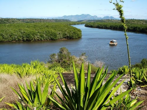 manguezal piraqueaçú